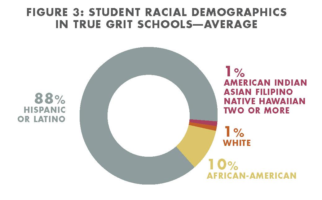 Student Racial Demographics at True Grit Schools
